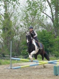Stage d'équitation en avril