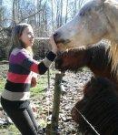 Photo de les--chevaux--d-abord