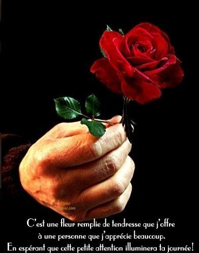 « Si tu as de nombreuses richesses, donne de ton bien ; si tu possèdes peu, donne de ton c½ur. » Proverbe arabe