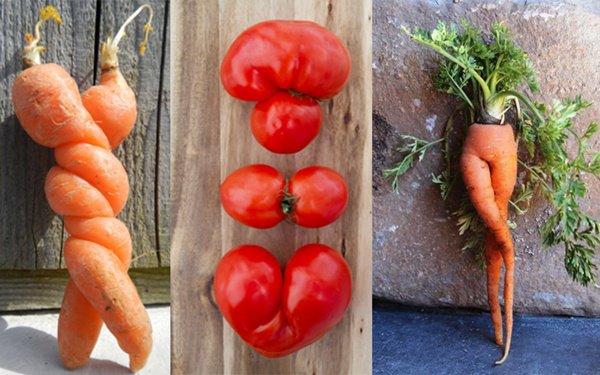 fruits & legumes moches !Développement durable Gaspillage alimentaire : on peut tous le réduire ! 14