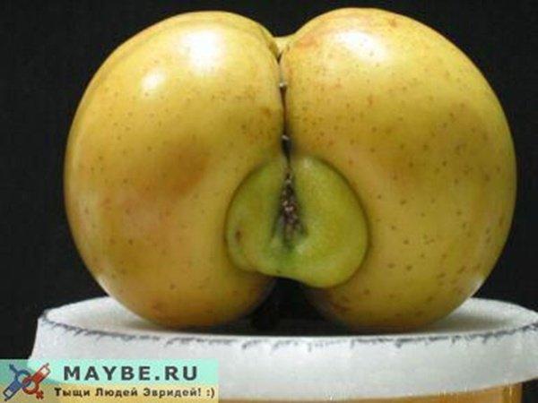 fruits & legumes moches !Développement durable Gaspillage alimentaire : on peut tous le réduire ! 20