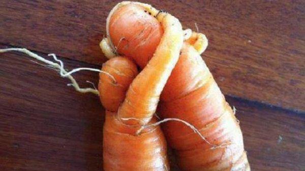 fruits & legumes moches !Développement durable Gaspillage alimentaire : on peut tous le réduire ! 39