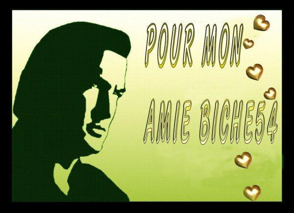 KDOS POUR MON AMIE BICHEDU54 !!!!! MERCI A MON AMI LEKING2A POUR CES JOLIES CREATIONS BISOUS A TOI BICHEDU54