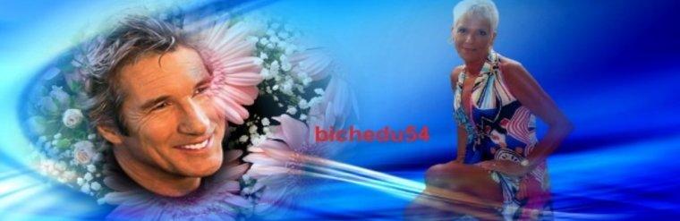 BICHEDU54