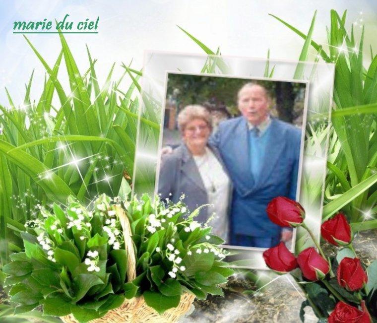 KDOS POUR MON AMIE MARIE-DU-CIEL QUE SES BRINS T APPORTE TOUT SE QUE TU DESIR BISOUS BICHEDU54