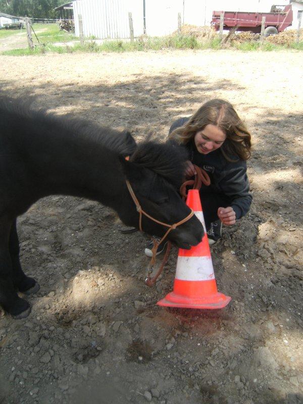 Mon petit poney sauvage !