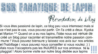 Fanatique-de-lapin ©