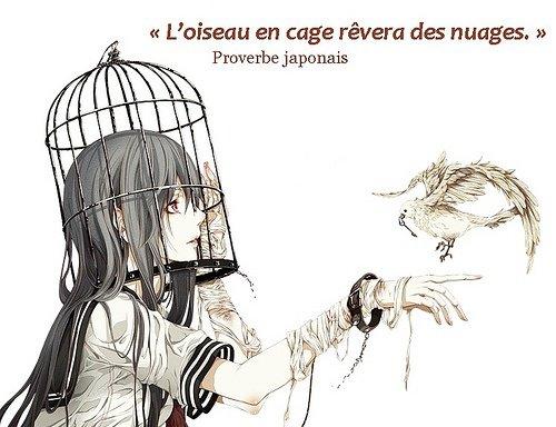 籠の鳥 雲を慕う                   ,Kago no tori kumo o shitau