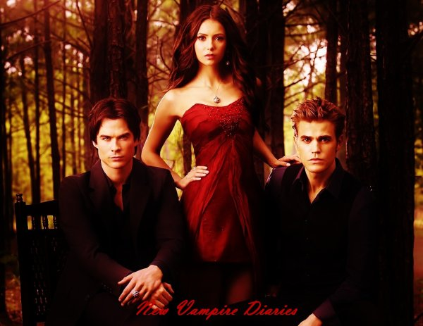 Bienvenue sur New Vampire Diaries !