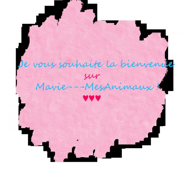 Bienvenue sur Mavie---MesAnimaux !