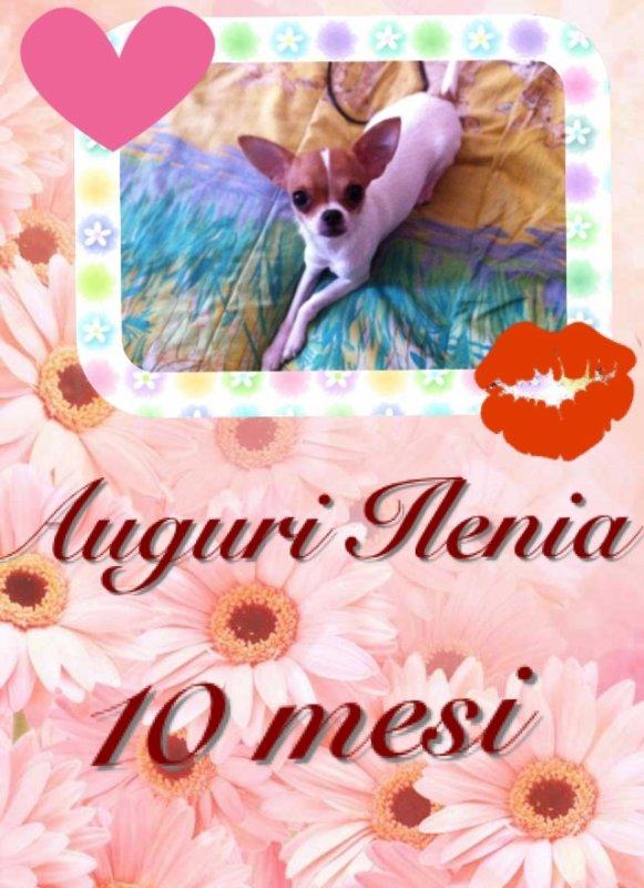 10 Mesi Ilenia