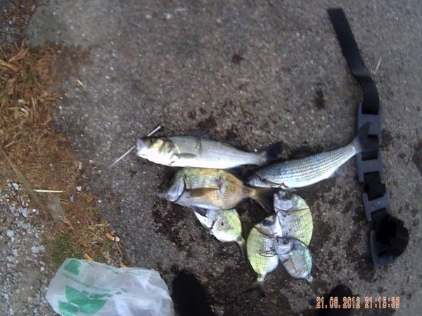 peche du 20 06 2012 a st aygulf