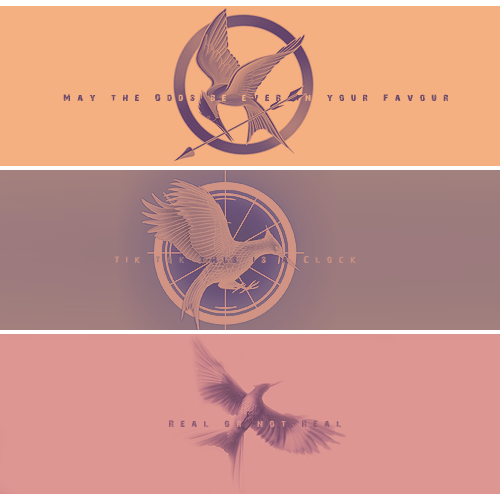Hunger Games 2.