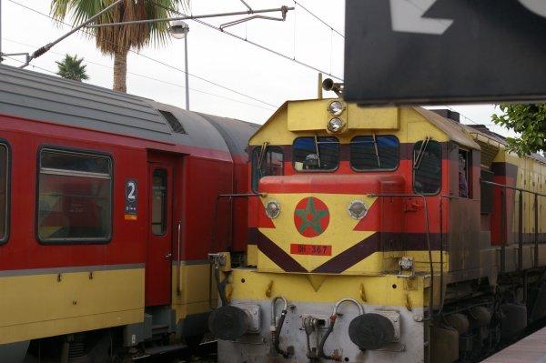 DH 367 à Fes