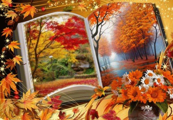 Et oui l'automne est la c'est triste