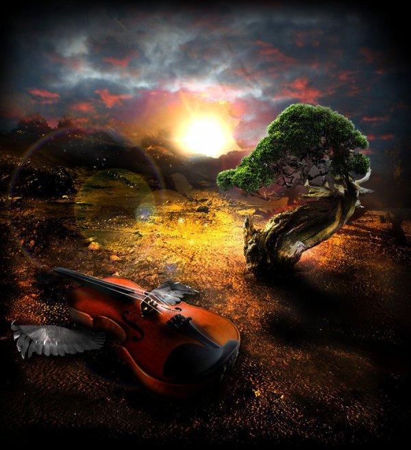 Un petit passage pour vous souhaiter une belle et douce nuit à tous!!!!