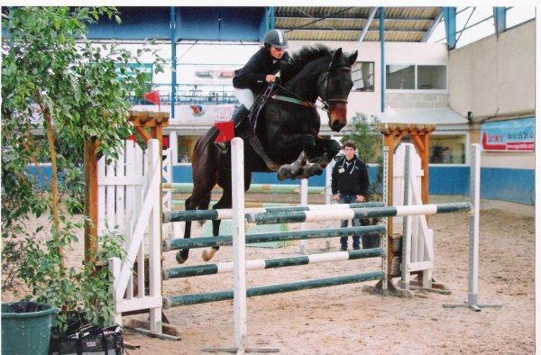 Article externe; Mon deuxième cheval.