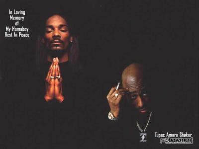 B.O.$.$---P.L.A.Y.E.R