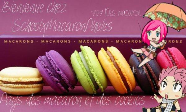Bienvenu cher petit Macaron♥