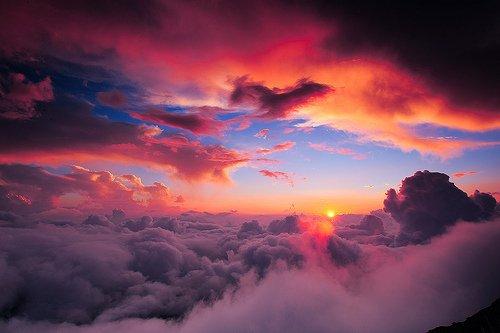 « Dans le ciel fuit la lune D'or, les nuages noirs couvrent les étoiles qui se cachent. La nuit n'a pas de feu.» de Ovide