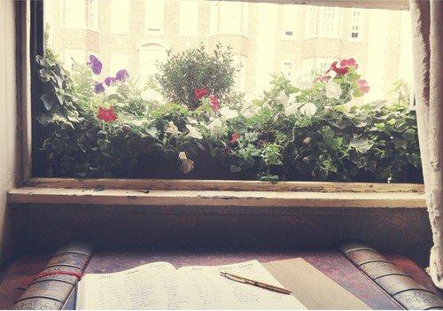 Une fenêtre est un lieu d'éveil au mystère que cache une vie humaine