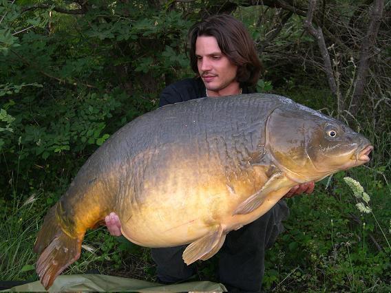 Concours du plus gros poisson rouge lapilapilou for Gros poisson rouge