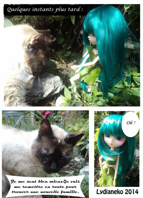 Lydianeko dream fairy  5 fin .