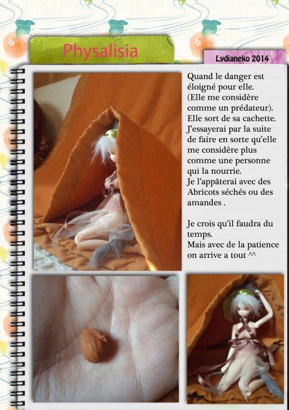 Journal d'observation d'une fée d'automne.