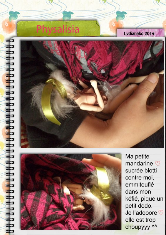 Journal d'observation d'une fée d'automne.2