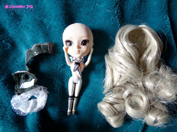 Hybridation Little pullip project