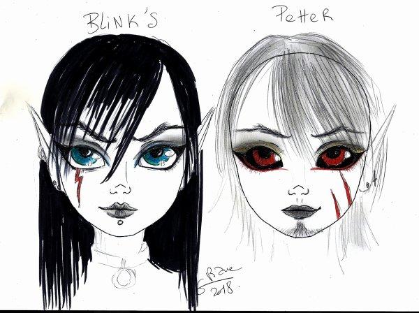 Présentation de Blink's