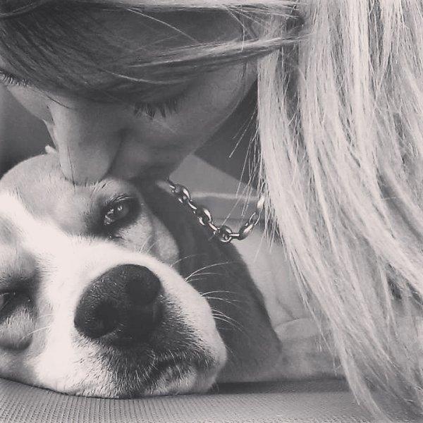 """""""Un chien c'est un meilleur ami qui ne vous abandonnera jamais et qui vous sera toujours fidèle."""""""