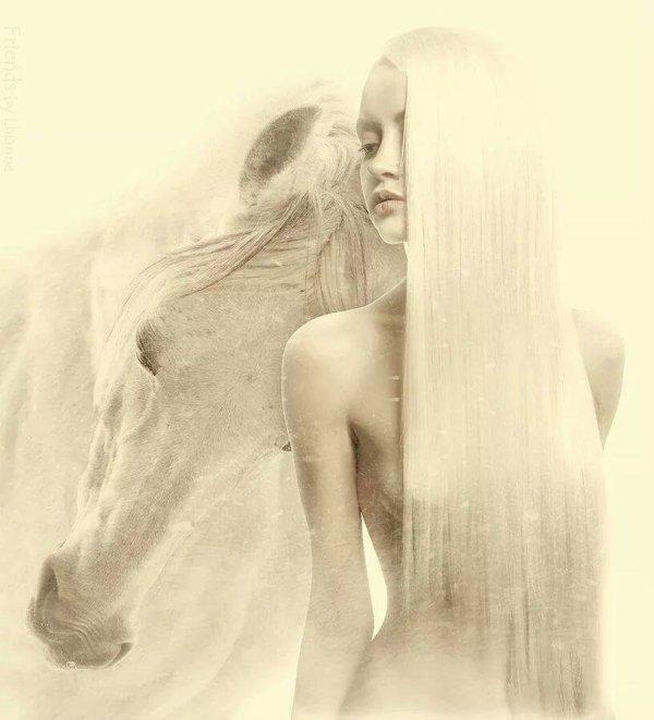 David Lanz - Dark Horse