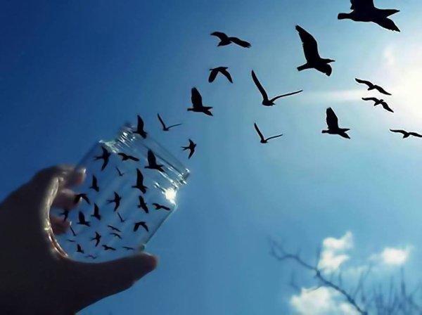 On dit que le temps change les choses, mais en fait le temps ne fait que passer et nous devons changer les choses nous-mêmes