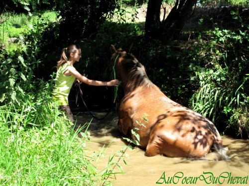 Balade à pied, et dans le ruisseau !!!!!!