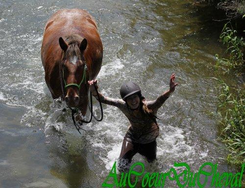 Première fois que je nage avec ma jument !!!!!