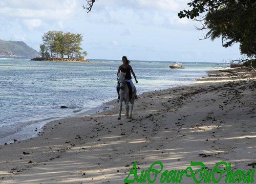 Vacances aux Seychelles !!!!