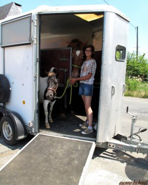 1er Travail du Van !!!