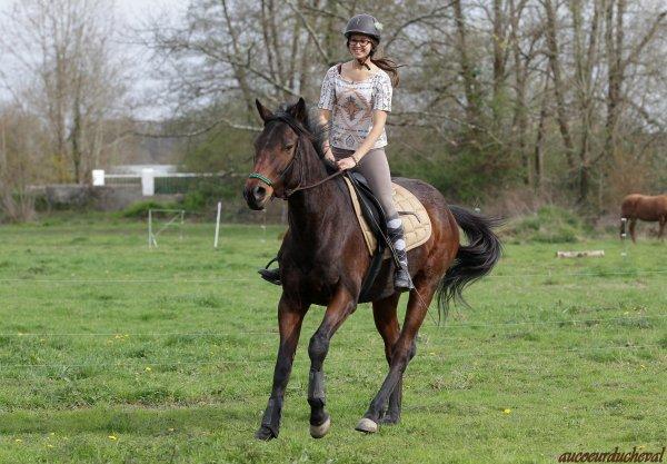"""ByeJos : """"Faites du cheval un compagnon et non un esclave, vous verrez quel ami extraordinaire il est"""""""