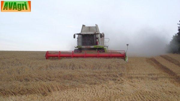 Moisson du blé 2010