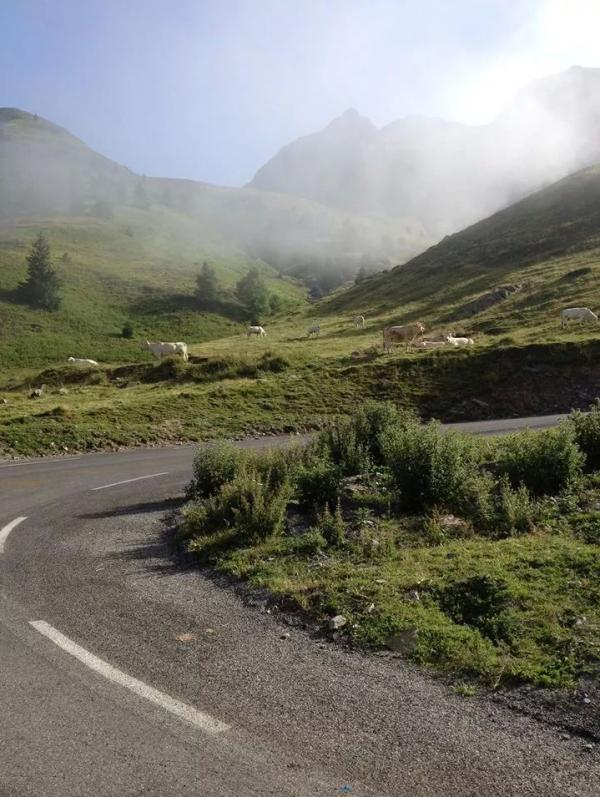 La France en Courant 2014 Etape 8 (bis): Montréjeau - Pierrefitte Nestalas 191km 27/07/14