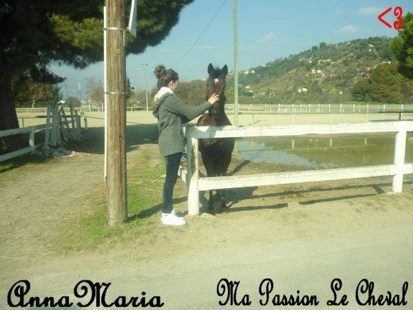 On A Tousse Une Passion & Bah Moi C'est Le Cheval Ma Plus Grande Passion <3<3