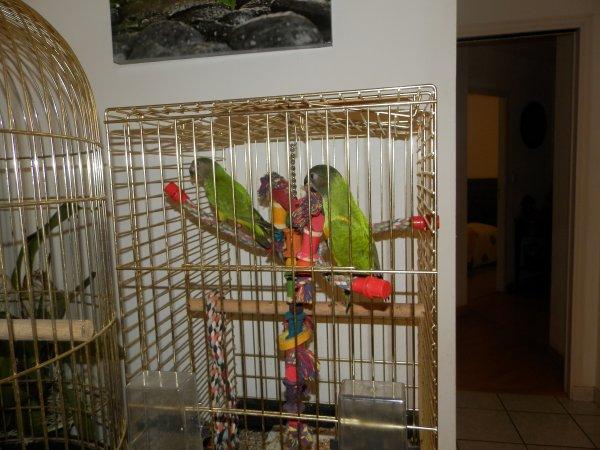 Titi et Lili & Moi :)