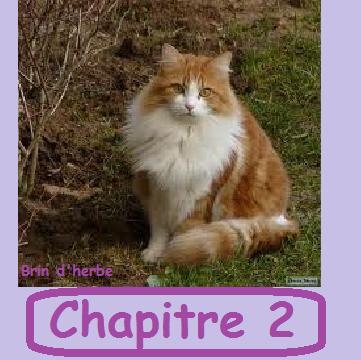 CHAPITRE 2 !!! ^^