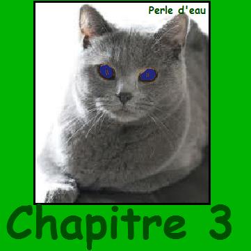 CHAPITRE 3 !!! ^^