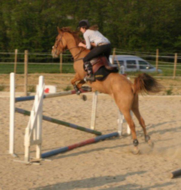"""""""Quand on vous dit 'ce n'est qu'un cheval' contentez-vous de sourire ; ils ne peuvent pas comprendre."""""""