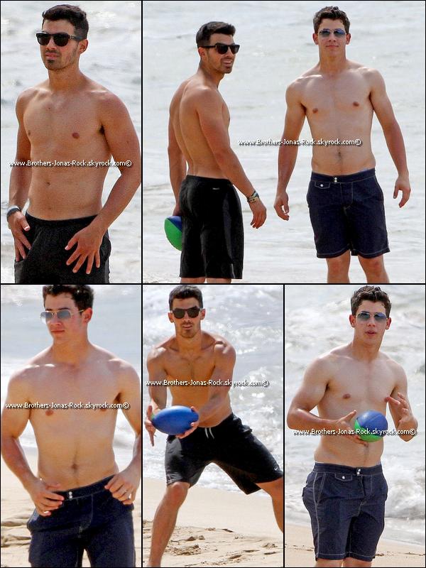 . 19/04/11 : La Jonas Family arrive à l'aéroport d'Hawaii pour passer une semaine de vancances.  .