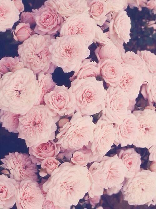 ♖Mode : Tendances Flower Power. ♖