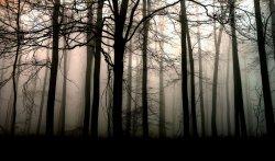 - Les Chercheuses du Paranormal -