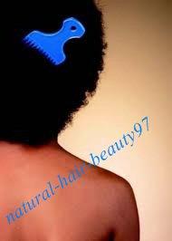 Comprendre le Fonctionnement du cheveux crépus (l)